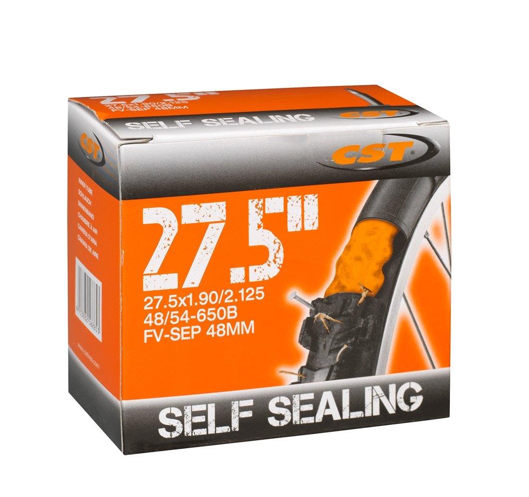 CST self sealing slange 27,5